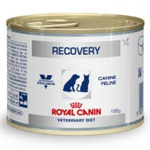 Royal Canin Recovery Can 195 gr